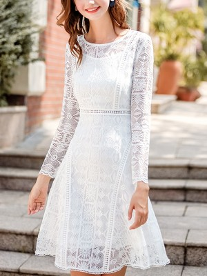White Semi-sheer Cutwork Lace Mini Dress