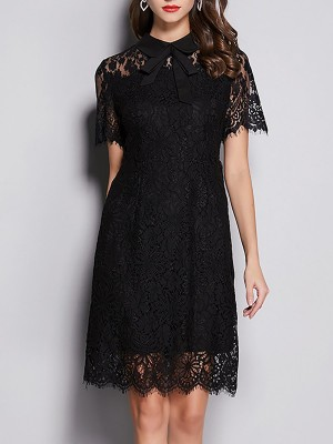 Shirt Collar Black Lace Sheath Date Paneled Solid Midi Dress